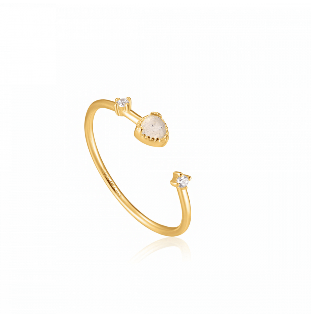 Gold Midnight Adjustable Ring
